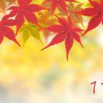 開運!新365日誕生日占い.com [無料占い] 11月
