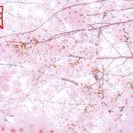 開運!新365日誕生日占い.com [無料占い] 4月